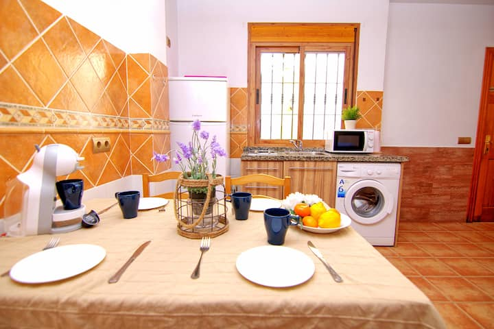 Malaga center apartment