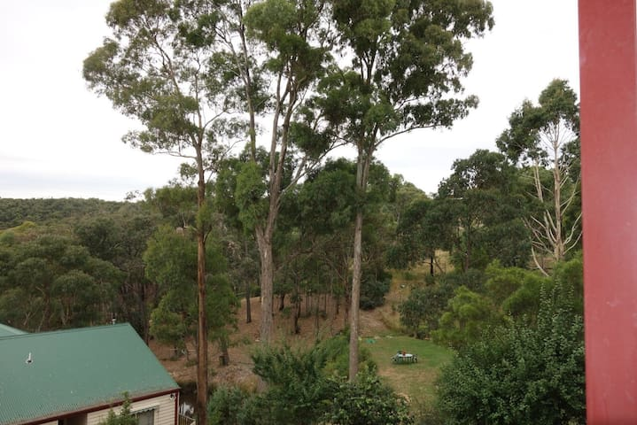 Wombat State Forest, easterly view