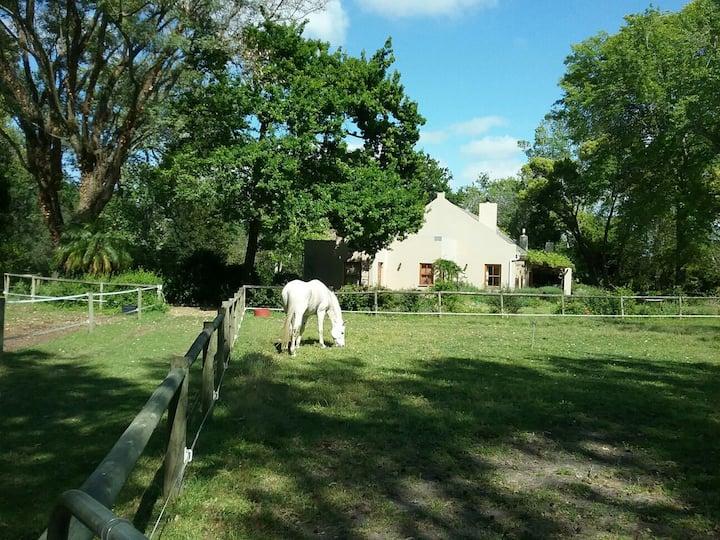 Languedoc Farm  Paddock suite
