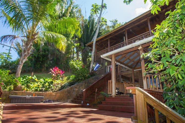 Jungle Reef Inn, Casa Tranquilo Suite 1