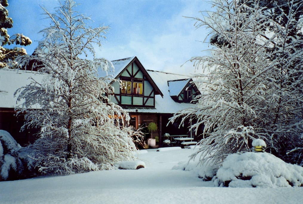 Snow at Cradle Forest Inn