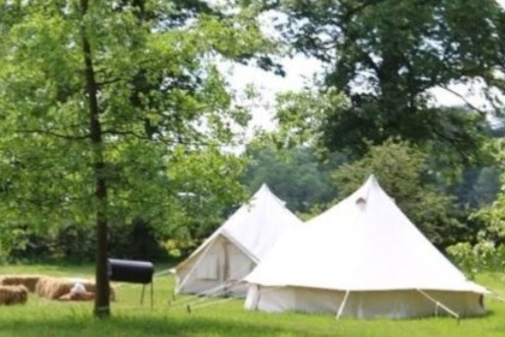 Glamping in 100 acres of Hertfordshire Countryside