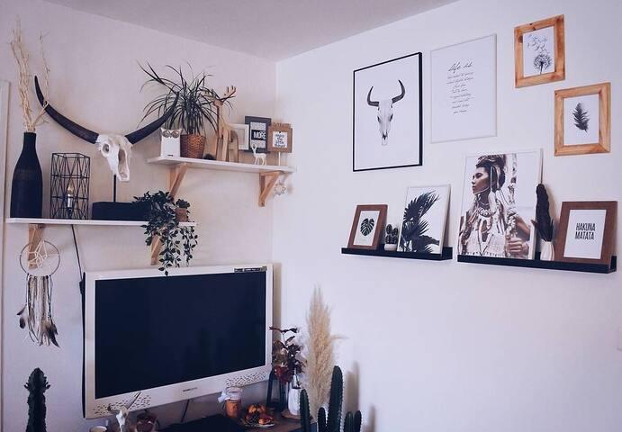 Appartement sympa avec chats - lumineux et calme