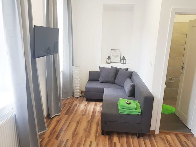 Double room with private bathroom in apartment