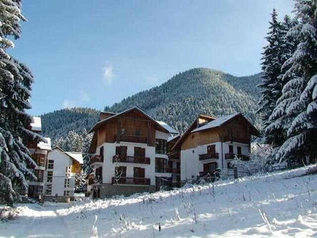 Family-friendly apartment close to ski slopes