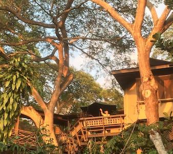 Treehouse Ohana