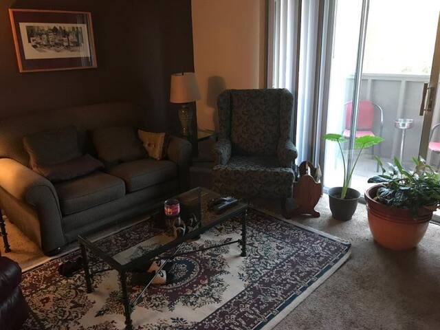 Private 1 bedroom 1 office apartment - Springfield - Apartamento