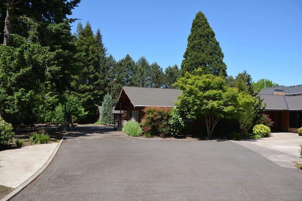 Driveway to the back of the property and the guesthouse