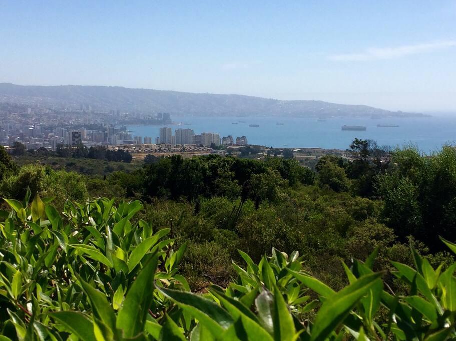 Vista incomparable a la ciudadad de Viña del Mar, bahía de Valparaíso y a la reserva forestal naval de la quinta región de Chile.