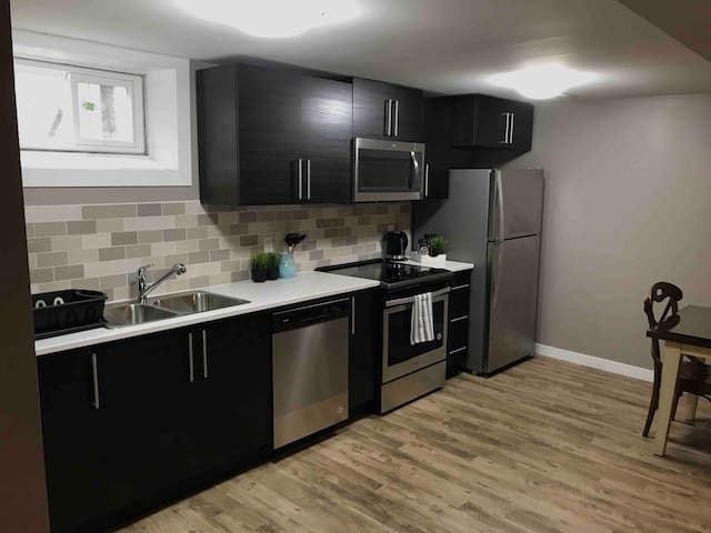 Newly renovated basement near DT, private entrance