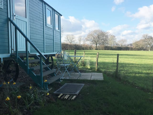 Heartsease - luxury Shepherd's Hut, amazing views.