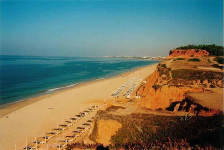 Falesia Beach nearby