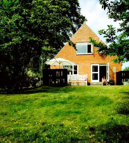 Lyst og rummeligt sommerhus med flere terasser - Samsø - Hus
