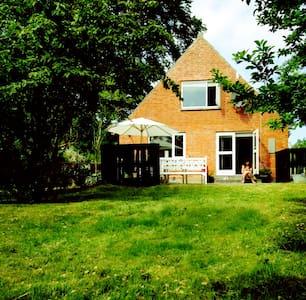 Lyst og rummeligt sommerhus med flere terasser - Samsø - Haus