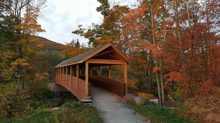 SEE the covered bridge on the Windham Walking Path