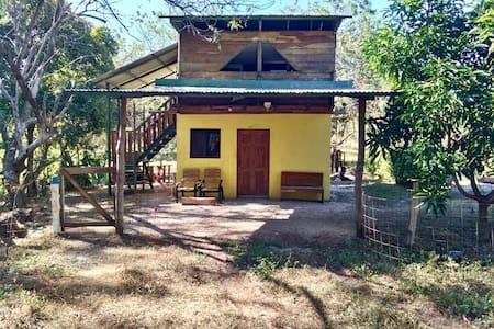 Pazyflora tree level studio, Playa Grande