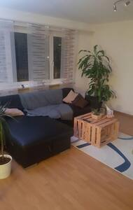 2.5 Zi. Wohnung Muttenz BASELWORLD - Muttenz