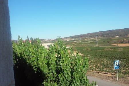 Habitacion con lavabo, vistas a la viña y montaña - Sant Cugat Sesgarrigues