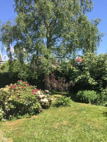 Cozy, blue wooden house in a garden backyard