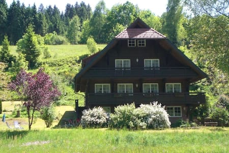 Cozy Apartment in Bad Rippoldsau-Schapbach with a view