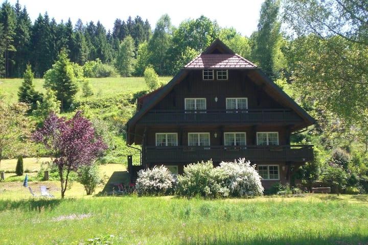 Ferienwohnung in Bad Rippoldsau-Schapbach mit Aussicht