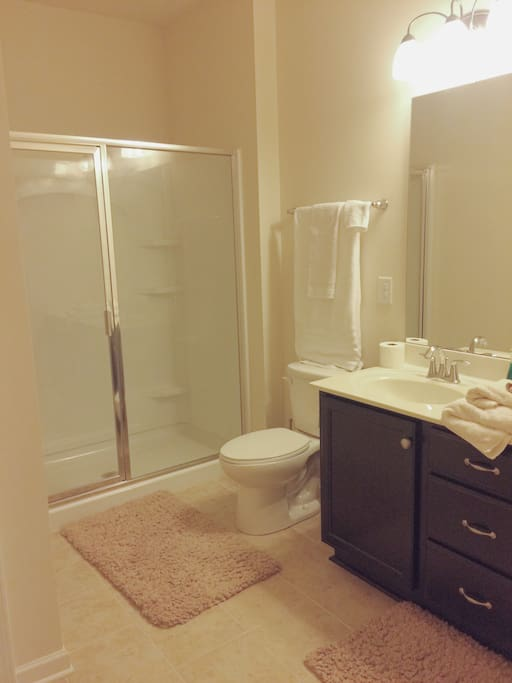 Full bathroom sink with his and her's sinks and awesome shower head.