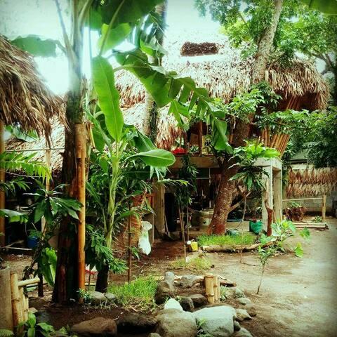 Dream Big Eco Hostel Dormitory