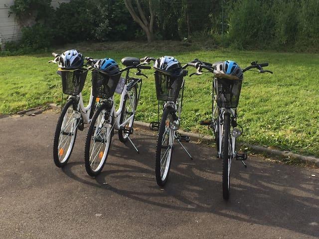 4 vélos type Hollandais en location sur place
