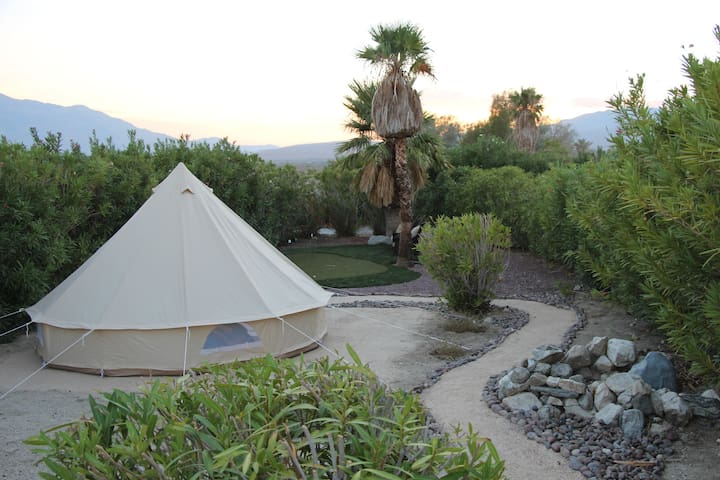 Experience Glamping Under the Desert Stars!