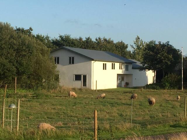 De syv små hjem Rm 2