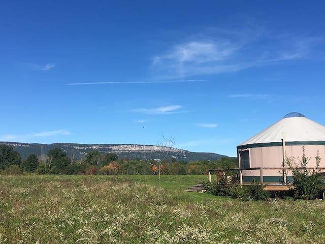 Fern - Kos Retreats @ Frogs Hollow Farm