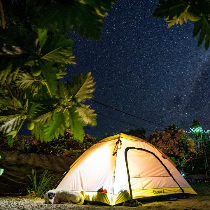 Maupiti Camping (tente dans mon jardin).