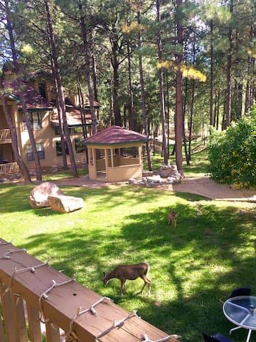 Lovely 2 bdr/2btr Condo Near Ski Rd - Ruidoso - Apartament