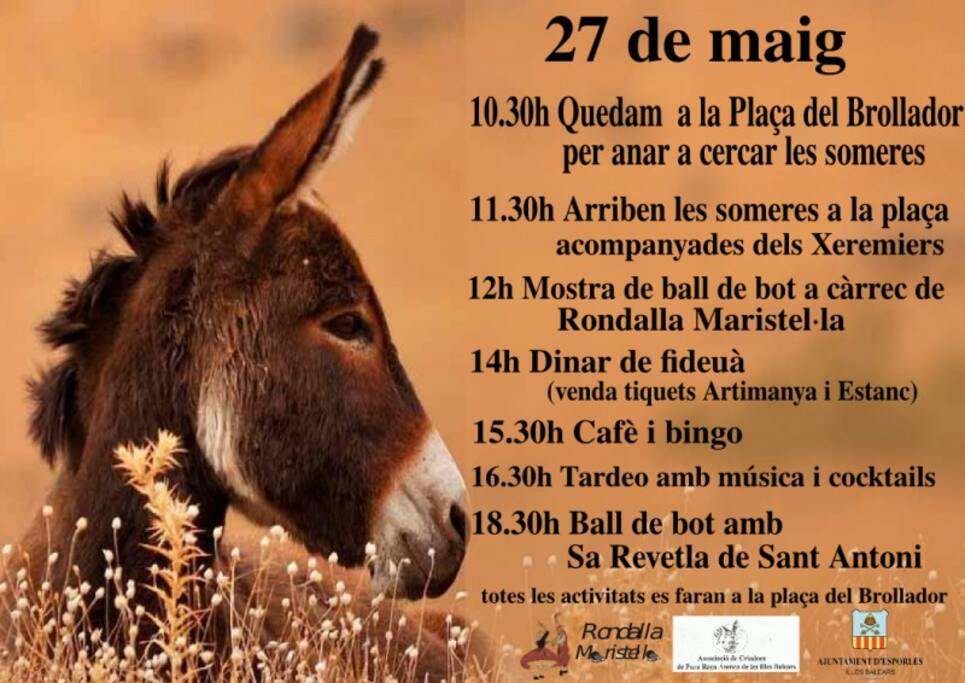 The Donkeys Arrive in The Torrente dry river bed in the middle of the village. Come and See Them!