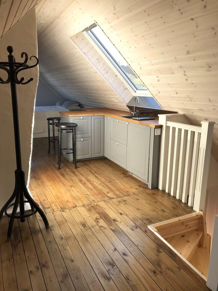 Nyrenoverad vindslägenhet nära Svenska Mässan!