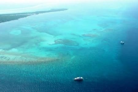 Private Belize Island Studio (Sky Level 18): Easy Boat Ride to Blue Hole: We organize it all for you - Apartment