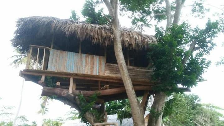 Ecotoo+tree room pres de la Plage de Juan y Lolo