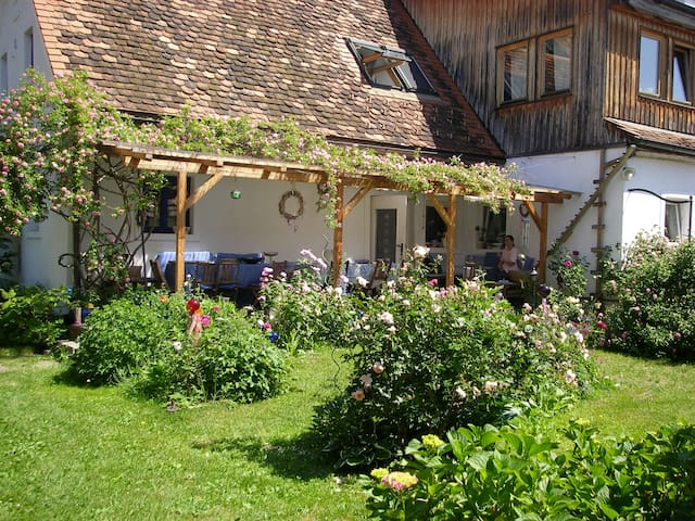 Unterkunft in spirituellem Zentrum - Graz - Penzion (B&B)