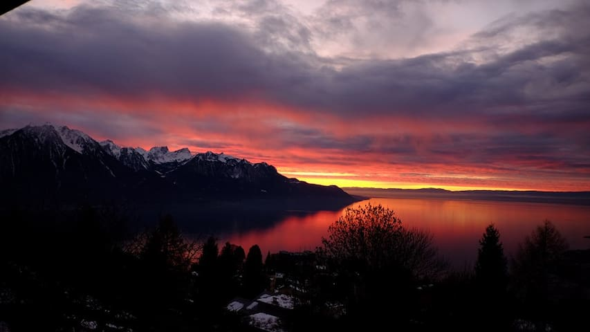 2 Rooms: Stunning Views of Lake Geneva & Alps