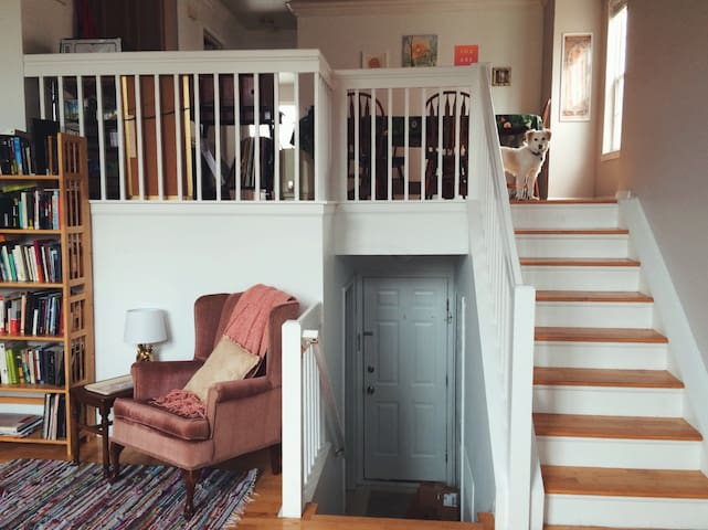 Gorgeous, Bright & Comfy 2BR Townhouse - Ann Arbor - Lägenhet