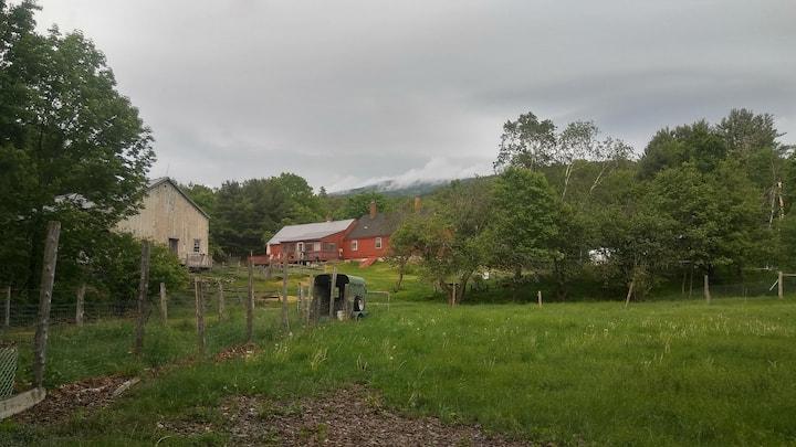 White Mountains Treehouse