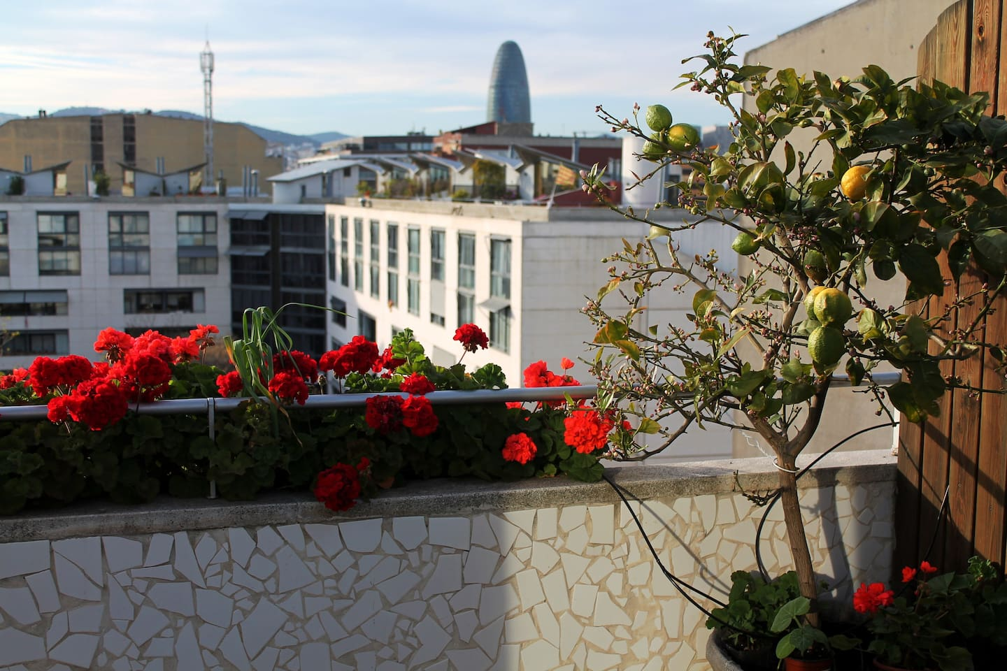 Views of the garden and Agbar Tower