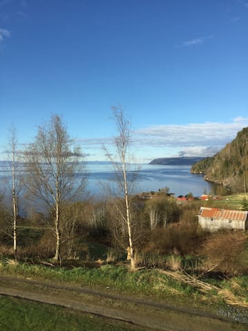 Tronvika - nydelig sted ved Trondheimsfjorden