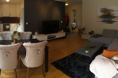 Cozy and new apartment - Ringerike