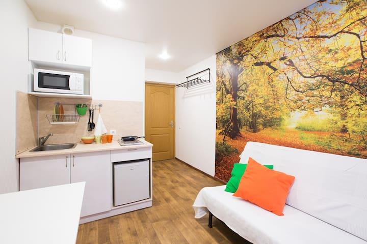 Сozy Orange apartment - Москва - Pis
