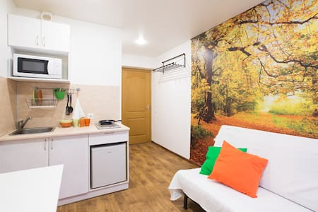 Orange Little Cozy Studio - Москва - Apartment