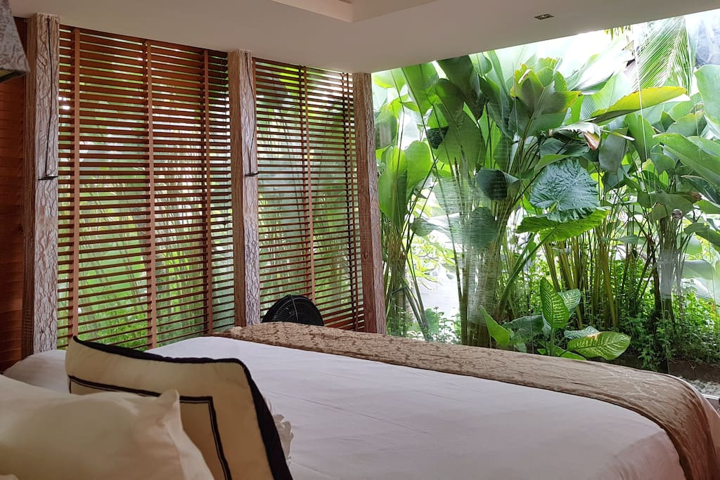 Looking out onto the tropical plants from your Master Bedroom in the trees.