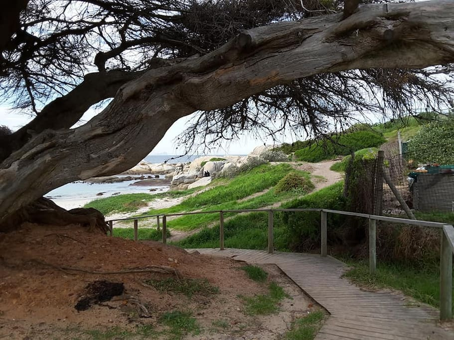 Walkway to Windmill Beach. Two minutes stroll from Porcupine Walk