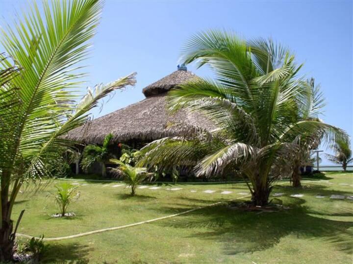maison sur la plage (11 lits)  famille et kite