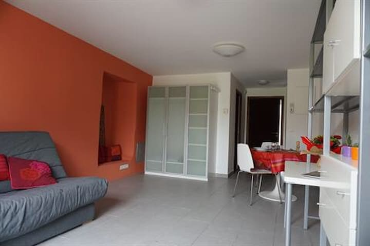 Beau studio récemment rénové chevry - Chevry - Apartamento